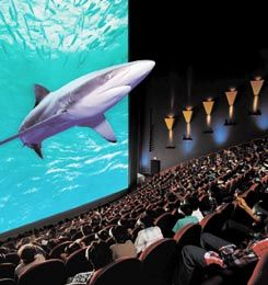 New England Aquarium Plus Imax Tickets In Boston Places