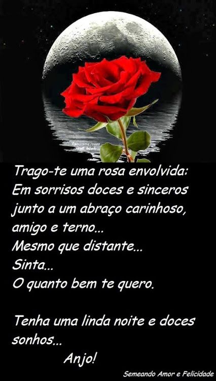 ✿⊱❥ Trago-te uma rosa envolvida em sorrisos doces e sinceros, junto a um abraço carinhoso, amigo e terno... mesmo que distante... sinta... o quanto bem te quero. Tenha uma linda noite e doces sonhos... Anjo!