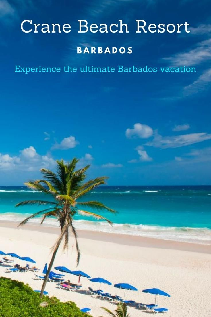 Spectacular vistas, pink sands, and warm turquoise waters await at The Crane resort in Barbados