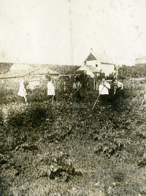 Girl Guides Victory Garden: raising crops and funds for war effort. Pre 1934.
