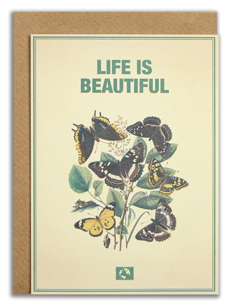 """Life is beautiful"". #messageearth #sustainable #greetingcards #sustainability #eco #design #ecodesign #vintage #cards #peculiar"