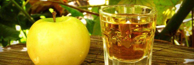 Яблочная водка – кальвадос, шнапс, кизлярка в домашних условиях + Видео | NaliVali