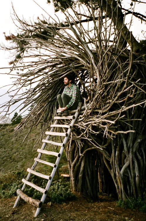 flentes:    Ryan and nest,HOMAKO