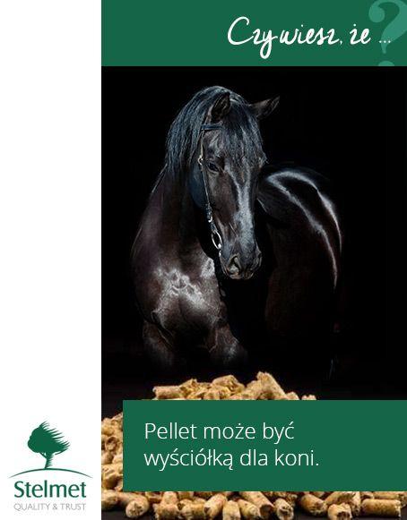 Pellet może być wyściółką dla koni.