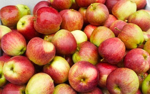 Appelcake met rozijnen: 250 g. meel naar keuze, bakpoeder, 100 g. boter, 100 g. yoghurt, 50 g. rijststroop, 1 tl. kaneel, 250 g. appelstukjes, 100 g. rozijnen, 5 eieren. Maak een cakebeslag (boter smelten, mengen met yoghurt en ei, goed mixen - dan meel, bakpoeder en kaneel toevoegen en er voorzichtig door mixen) en roer er de appelstukjes en rozijnen door. In een ronde/vierkante bakvorm storten en 30 min. bakken in een voorverwarmde oven op 175 graden. Ook lekker met stukjes gemberwortel.