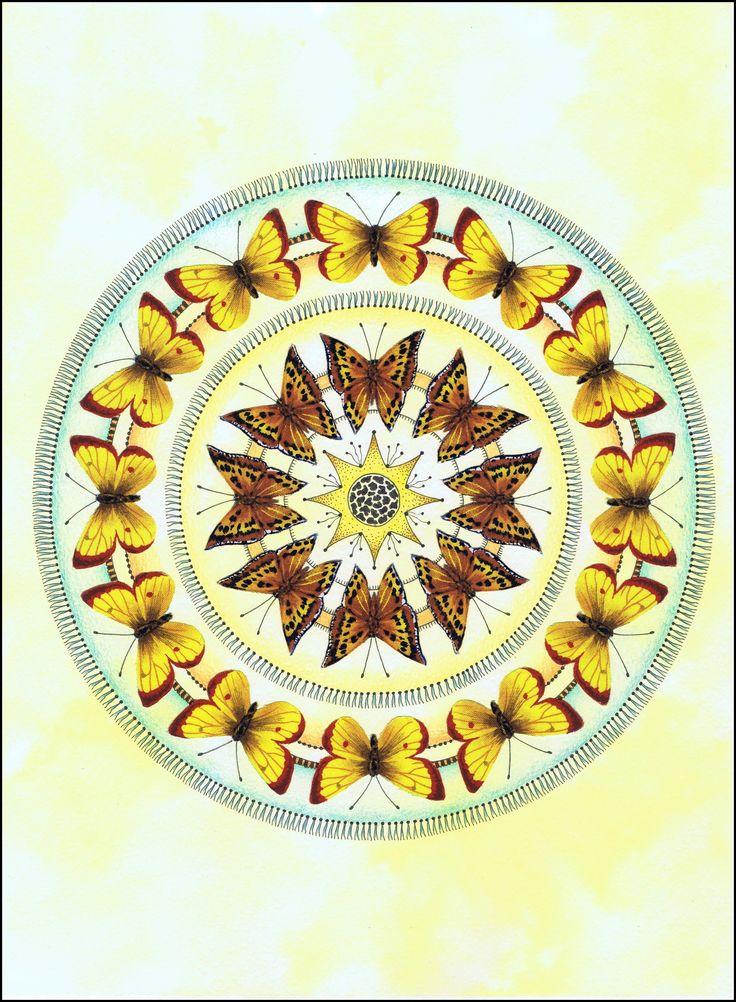 © Vlinders-geel-bruin 30x40cm op 250grams papier met aquarel-stof-tekenpen-kleurpotlood.