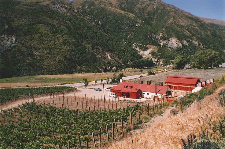A view of our #winery and #vineyard from 1990 #gibbstonvalley #throwback