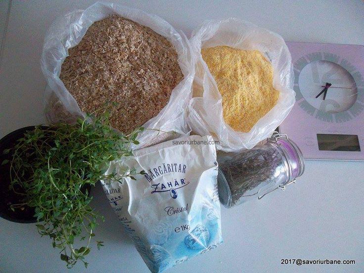 Cum se umple borsul de casa reteta traditionala veche, moldoveneasca. Cum se umple borsul de putina? Cum se face bors natural in casa de la zero, fara husti
