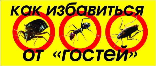 http://717456.ru/wp-content/uploads/2016/01/стоп-насекомым.jpg
