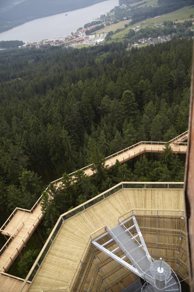 Lipno Treetop Walkway, Czech Republic