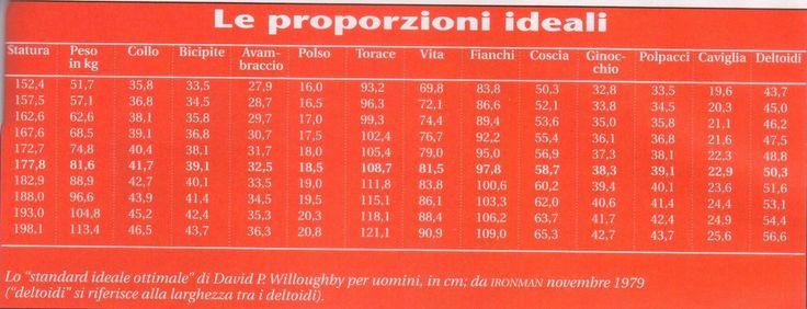 Le Proporzioni ideali by David P. Willoughby. http://www.db-madmethod.com  #personaltrainer #rovigo #DavidWilloughby