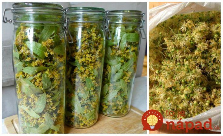 Sirup z lipového kvetu pre zdravé srdce a proti chorobám: Natrhajte ho včas a urobte zásobu prírodného lieku na celý rok!