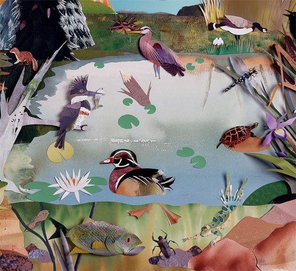 paper artist Jo Lynn Alcorn | Connecticut Audubon Society: Alcorn S Paper, Art Work, Alcorn Paper, Art Birds, Paper Flowers, Artist Jo