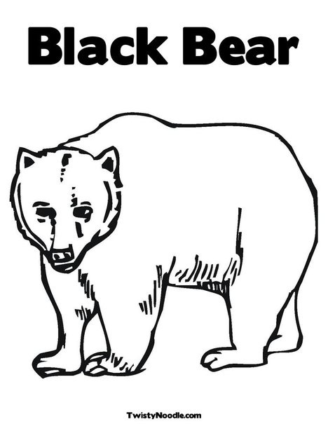 Black Bear Picture Coloring Page