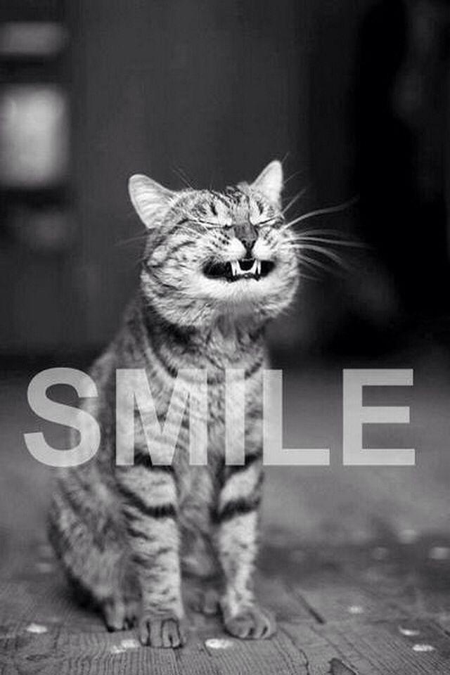 Smile!! Sooo true!