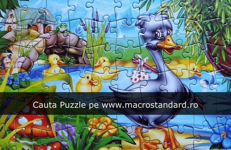 Cauta puzzle pe www.macrostandard.ro
