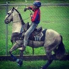 Resultado de imagen para imagenes caballo de coleo