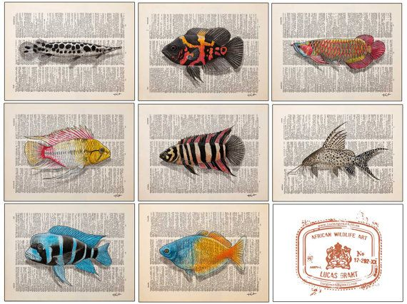Fish Insects Reptiles drawn onto dictionary pages by LucasGrantWildlife, $40.00