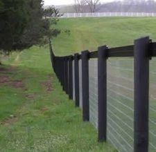 Horse Fencing.  This would work for Queenie too.
