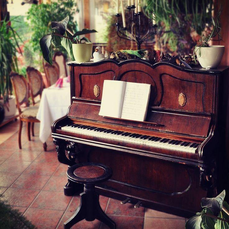 красивые картинки пианино рояль жимолость каприфоль одна