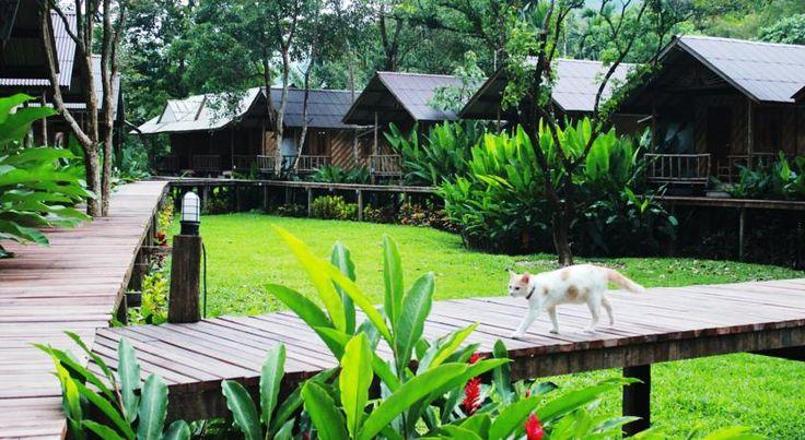 Khao Sok Cabana Resort, Thailand - Booking.com