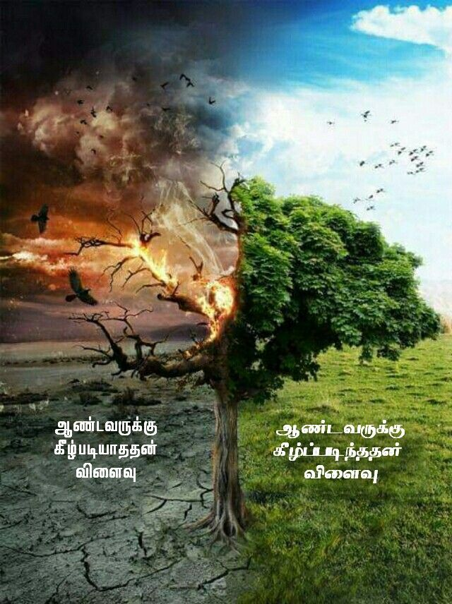 Pin by Tamil mani on Tamil Bible Verse Wallpapers in 2020