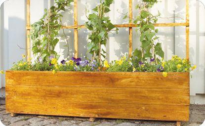 Bygg din egen blomlåda med spaljé