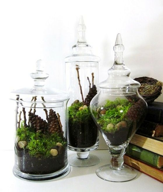 I also have loads of covered jars like these for terrariums using the fake succulents. Just have to set them up.