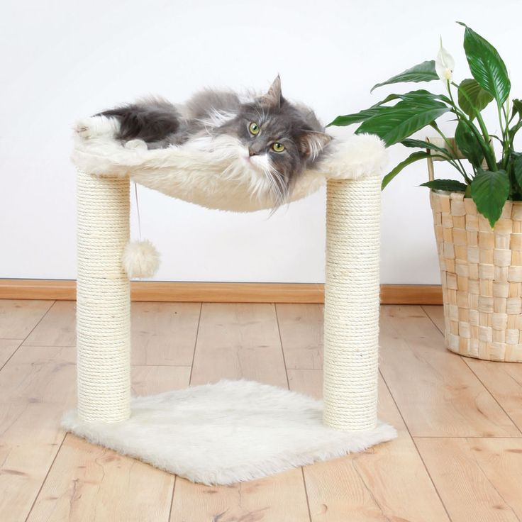 CAT condo hammock scratching post perch hanging balls multiple cats bess choice #BestChoiceProducts
