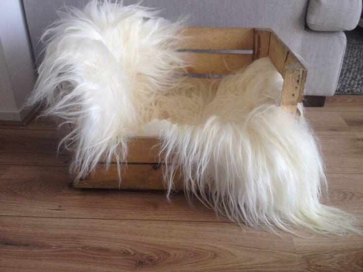 Kattenmand van sinaasappelkistje en langharig schapenkleed <3 - Loods 5/DIY -