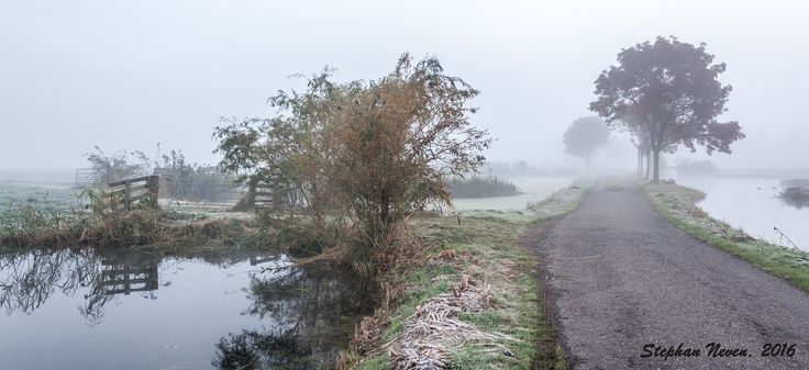 This little polder road seems to go to nowhere, due to the heavy mist on that Octobermorning. Actually this little polder road leads to a small town called Bergambacht.