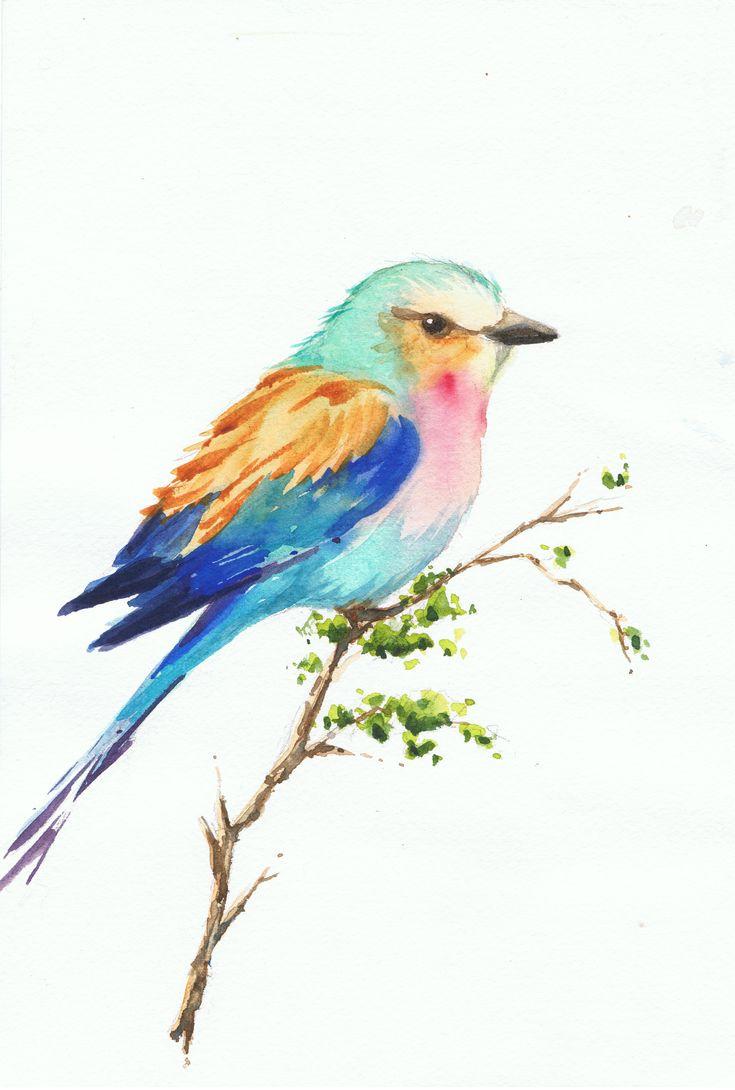 Pajaro colorido. Watercolor  -  Acuarela by Isabel Mariasg.