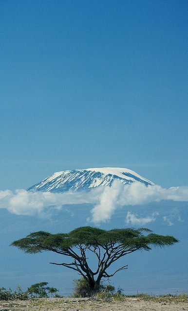 Mt. Kilimanjaro National Park, Tanzania: A dormant volcano and the highest mountain in Africa at 19,341'. It has three volcanic cones. Awesome