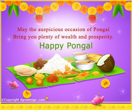 Send your Pongal wishes to your near and dear ones.