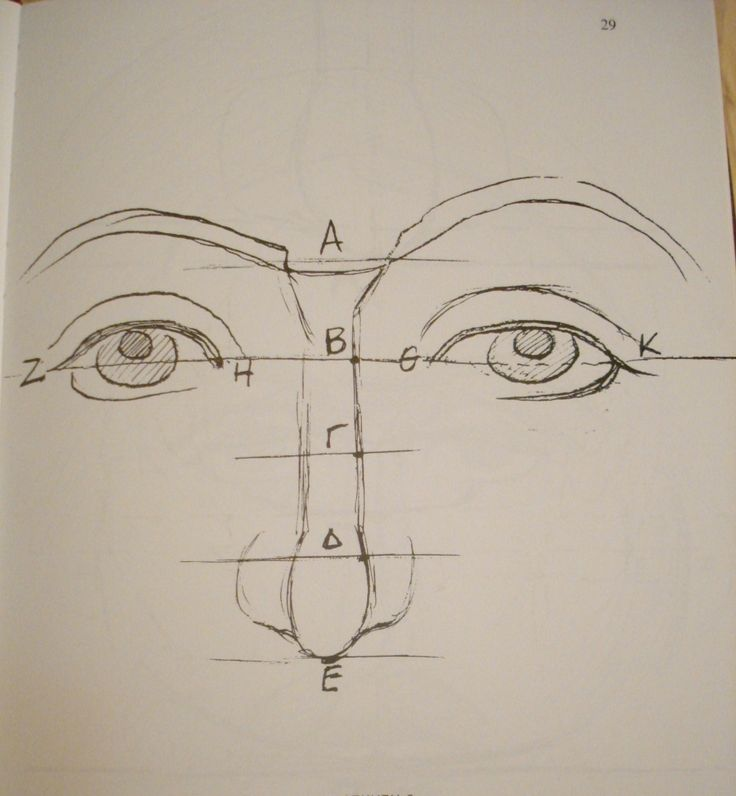 Drawing the Eyes and Nose.