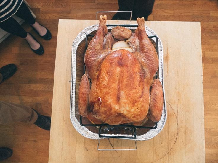 Happy Thanksgiving!     Matt Golden