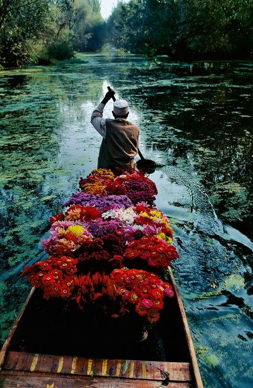 Steve McCurry, Flower Seller at Dal Lake, Srinagar, Jammu and Kashmir, 1999 © Steve McCurry.