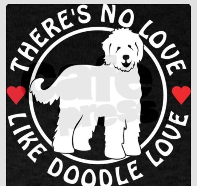 I love my Labradoodle!
