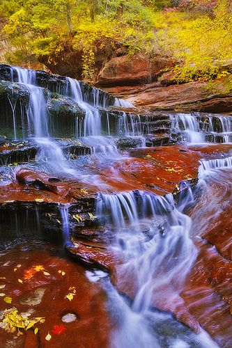 Autumn in Arch Angel Falls, Zion National Park, Utah