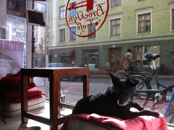 Brooklyn Cafe's unofficial mascot - Cute!