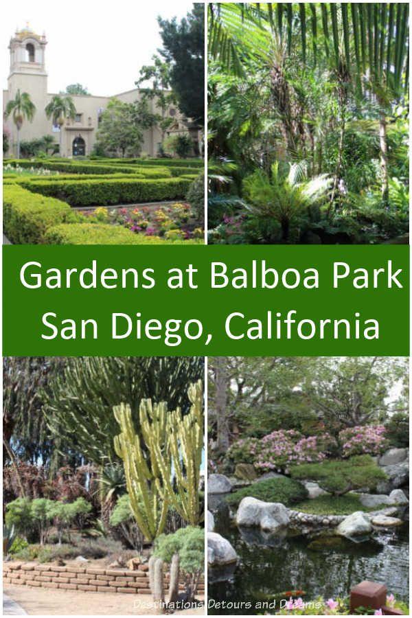 024f9dfc2cc289de1528ae3a5a114a83 - Pacific Gardens North Park San Diego