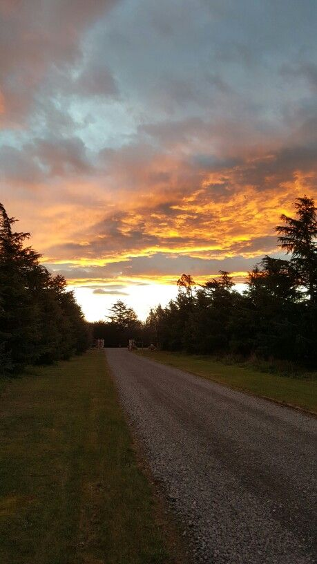 Sunset on the Driveway