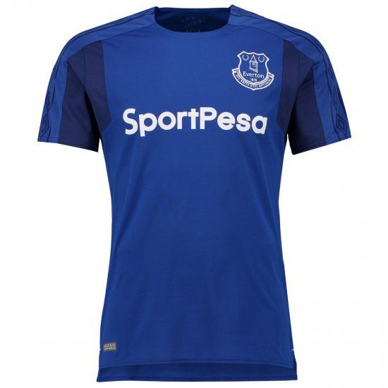 http://www.fcbjerseys.com/2017-cheap-jersey-everton-home-replica-football-shirt-p-12196.html