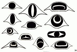 Once you have selected your northwestNative American spirit animal, here are some links for images. Notice the use of ovoid and U-shapes: Key symbols of West Coast Native ArtClick on the small pi…