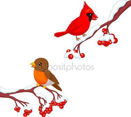 Cute cartoon robin vogel en kardinaal vogel op de berry boom — Stockillustratie #89001256