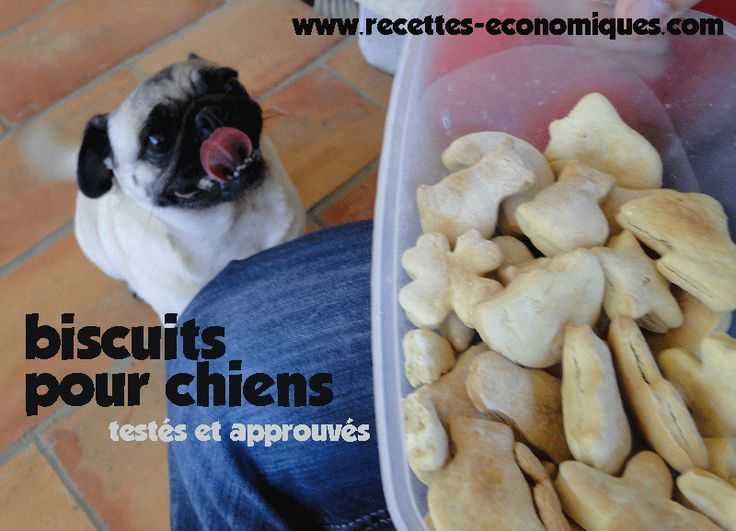Bonjour tout le monde et nos amis les bêtes aussi!! Aujourd'hui voici une recette de biscuits pour chien fait maison, testés et approuvés, c'est facile à voir et amusant. Nos toutous ont aussi droit à une petite récompense de temps en temps (et bien meilleure que celle du commerce) http://www.recettes-economiques.com/recettes/biscuits-pour-chien-maison-thermomix/
