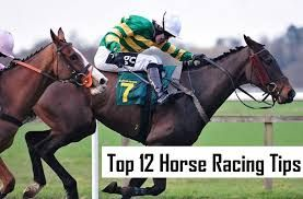 Horse racing tips that can help guide them to placing winning bets at these great sites. These tips, which take factors such as horses. Horse betting tips is useful and important to new bettors. #horsebettingtips. https://sportsbettingus.org/horse-racing-tips/