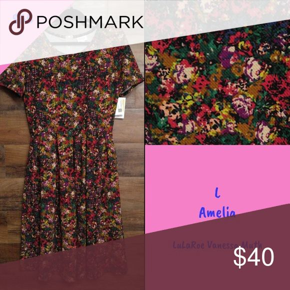 LuLaRoe Amelia I'm an ex-LuLaRoe Consultant with lots of items left over :) All are NWT and come from a smoke free home! LuLaRoe Dresses