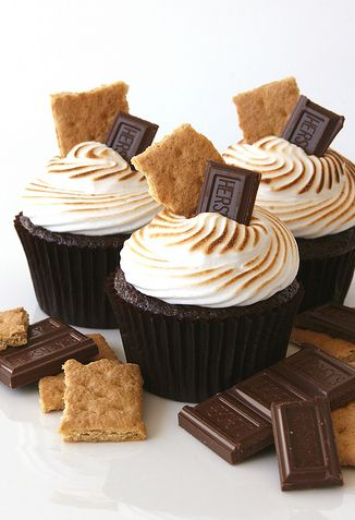 Campfire Smores Toasted Marshmallow Cupcakes - chocolate cupcakes with marshmallow frosting toasted with a cooking blow torch.