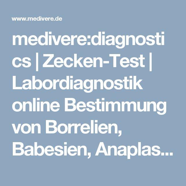 medivere:diagnostics | Zecken-Test | Labordiagnostik online Bestimmung von Borrelien, Babesien, Anaplasmen, FSME und Rickettsien in der Zecke